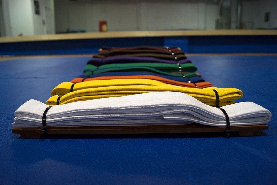 Il Karate e i bambini le cinte distinguono l'esperienza